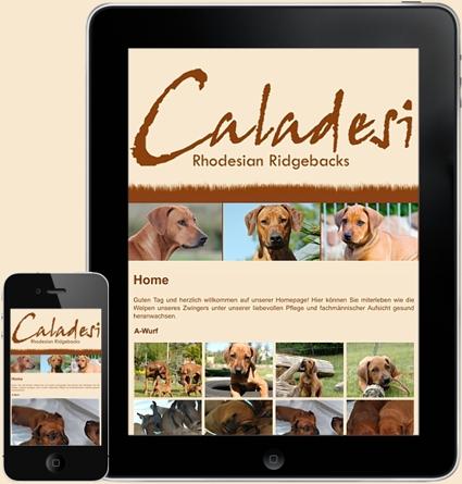 Caladesi Rhodesian Ridgeback | Mobile Website